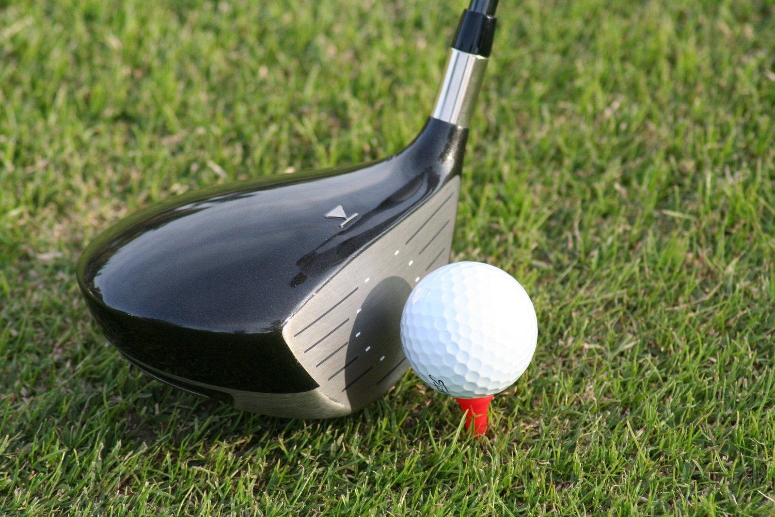 Crunching Your Longest Drive