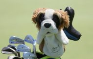 Rory McIlroy Has Perfect Dog House Headcover