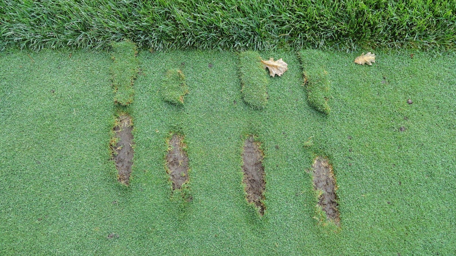 Practice Range Divots Are You Best Diagnostic Tool