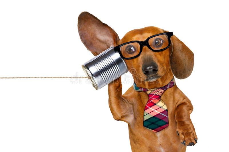 We're Calling BS On Brad Faxon's Bryson USGA Rumor